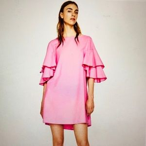 Zara Pink Ruffled Sleeve A-line Dress